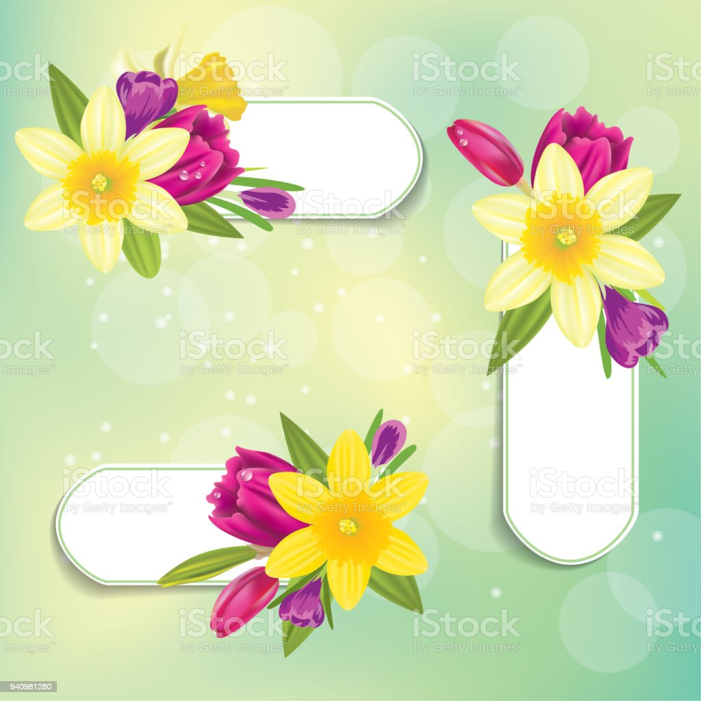 Realistic daffodil and spring flowers labels stock vector art more realistic daffodil and spring flowers labels royalty free realistic daffodil and spring flowers labels stock mightylinksfo