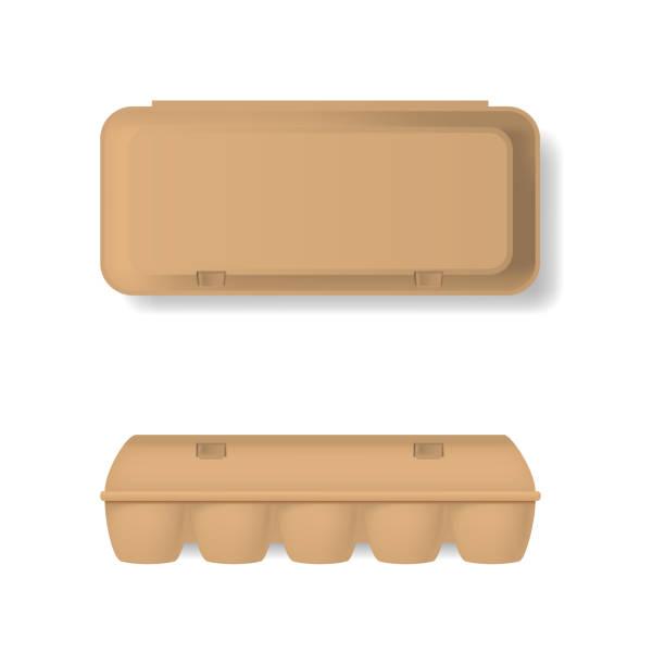 stockillustraties, clipart, cartoons en iconen met realistische gedetailleerde 3d bruin lege plastic container voor eieren sjabloon mockup instellen. vector - chicken bird in box