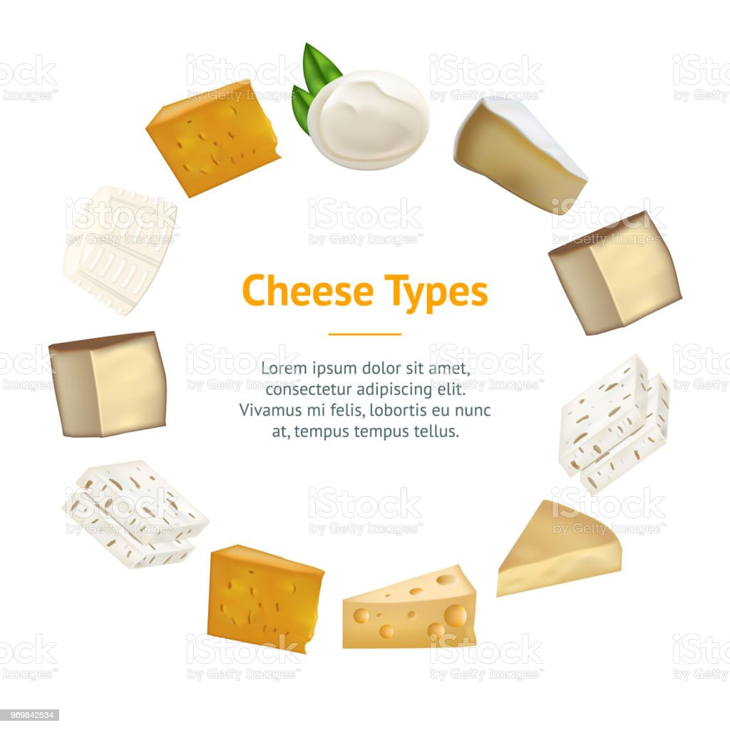 Realistic Detailed 3d Cheese Banner Card Circle. Vector vector art illustration
