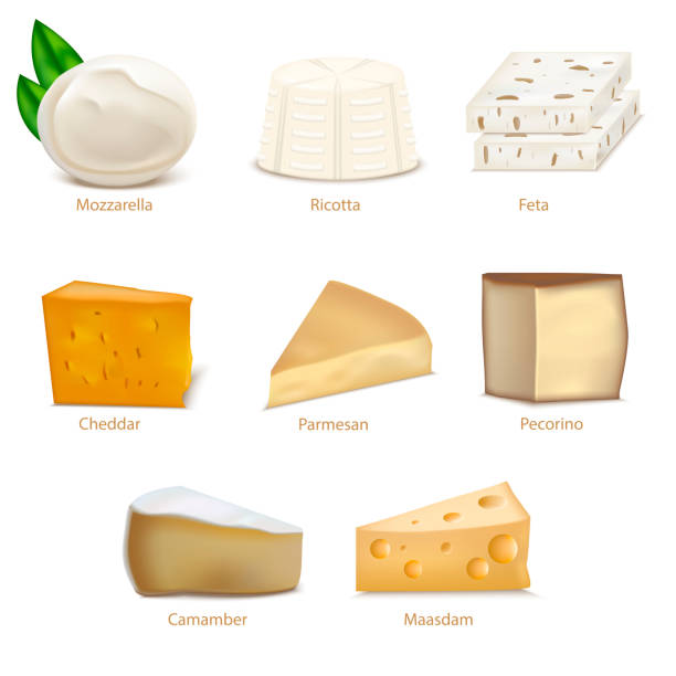 Realistic Detailed 3d Cheese Different Types Set. Vector Realistic Detailed 3d Cheese Different Types Set Include of Cheddar, Parmesan, Maasdam, Camembert, Mozzarella and Feta. Vector illustration mozzarella stock illustrations