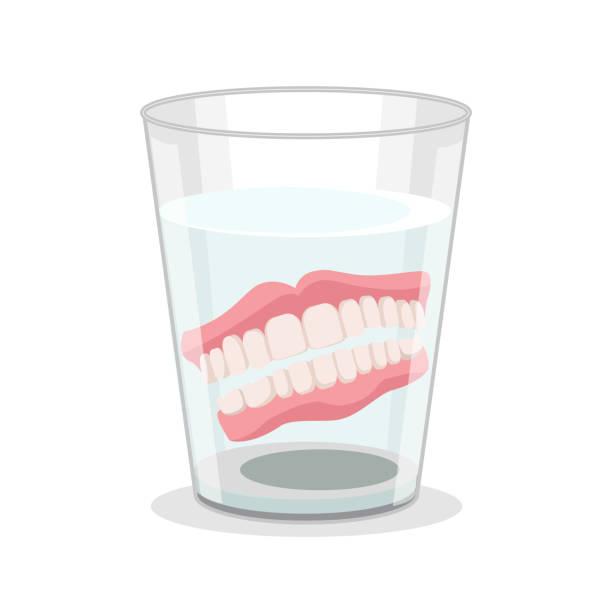 Realistic Detailed 3d Dentures in Glass. Vector vector art illustration