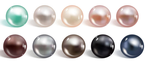 illustrazioni stock, clip art, cartoni animati e icone di tendenza di set realistico di perle di diversi colori. madreperla rotonda formatasi all'interno del guscio di un'ostrica di perla, gemma preziosa. illustrazione vettoriale - sfera lucida