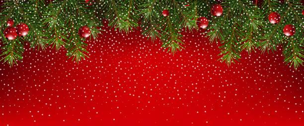 Realistische Tannenzweigen auf rotem Grund. Weihnachts-Banner mit Schneeflocken – Vektorgrafik