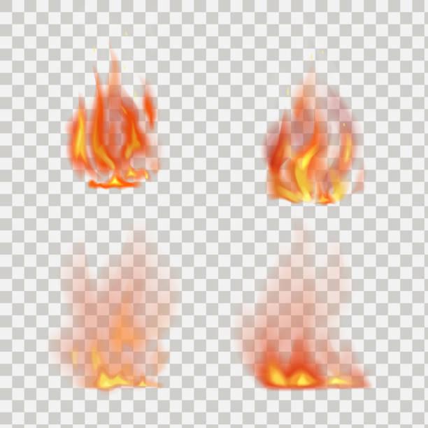 stockillustraties, clipart, cartoons en iconen met realistic fire flames vector on transparent background - illustraties van bosbrand
