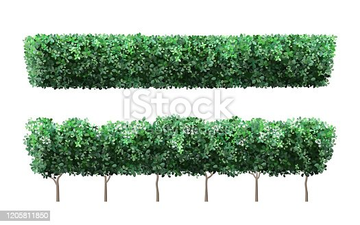 Realistic garden plant fence. Nature green seasonal bushes, tree crown bush foliage and green fence with cute flowers. Garden shrub vector illustration set. 3d public park and garden elements