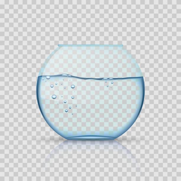 realistische glas goldfischglas, aquarium mit wasser auf transparentem hintergrund - fischglas stock-grafiken, -clipart, -cartoons und -symbole