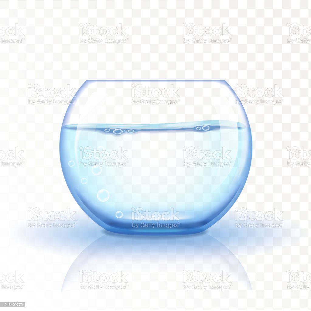 Realistic glass fishbowl, aquarium with water on transparent background. 벡터 아트 일러스트
