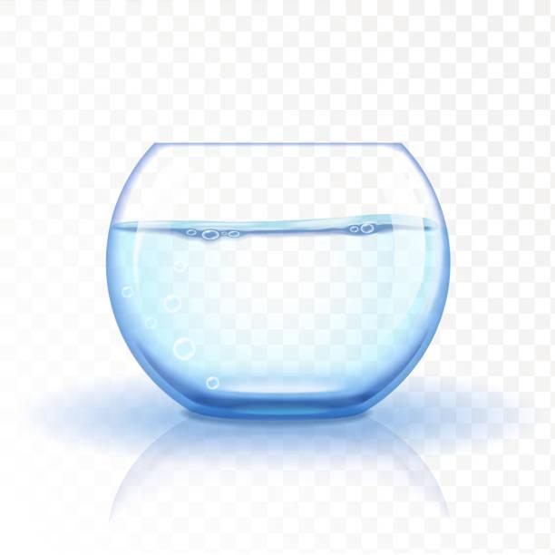 realistic glass fishbowl, aquarium with water on transparent background. - fischglas stock-grafiken, -clipart, -cartoons und -symbole