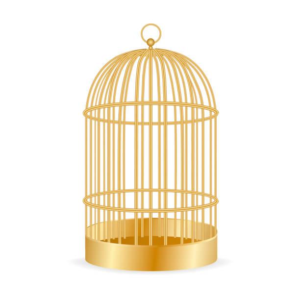 illustrations, cliparts, dessins animés et icônes de cage à oiseaux dorée réaliste isolé sur blanc. illustration vectorielle. - dessin cage a oiseaux