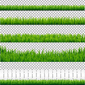 Realistic Green Grass Borders