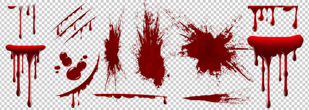 Realistic Halloween blood isolated on transparent background. Blood Drops and splashes. Realistic Halloween blood isolated on transparent background. Blood Drops and splashes. Can be used on halloween design, medical, healthcare, flyers, banners or web. Vector blood illustration. EPS 10. blood stock illustrations