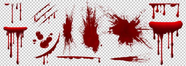 ilustraciones, imágenes clip art, dibujos animados e iconos de stock de sangre realista de halloween aislada sobre fondo transparente. gotas de sangre y salpicaduras. - sangre