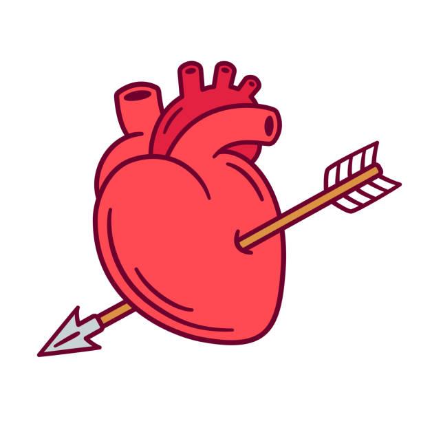 Realistic heart with arrow vector art illustration