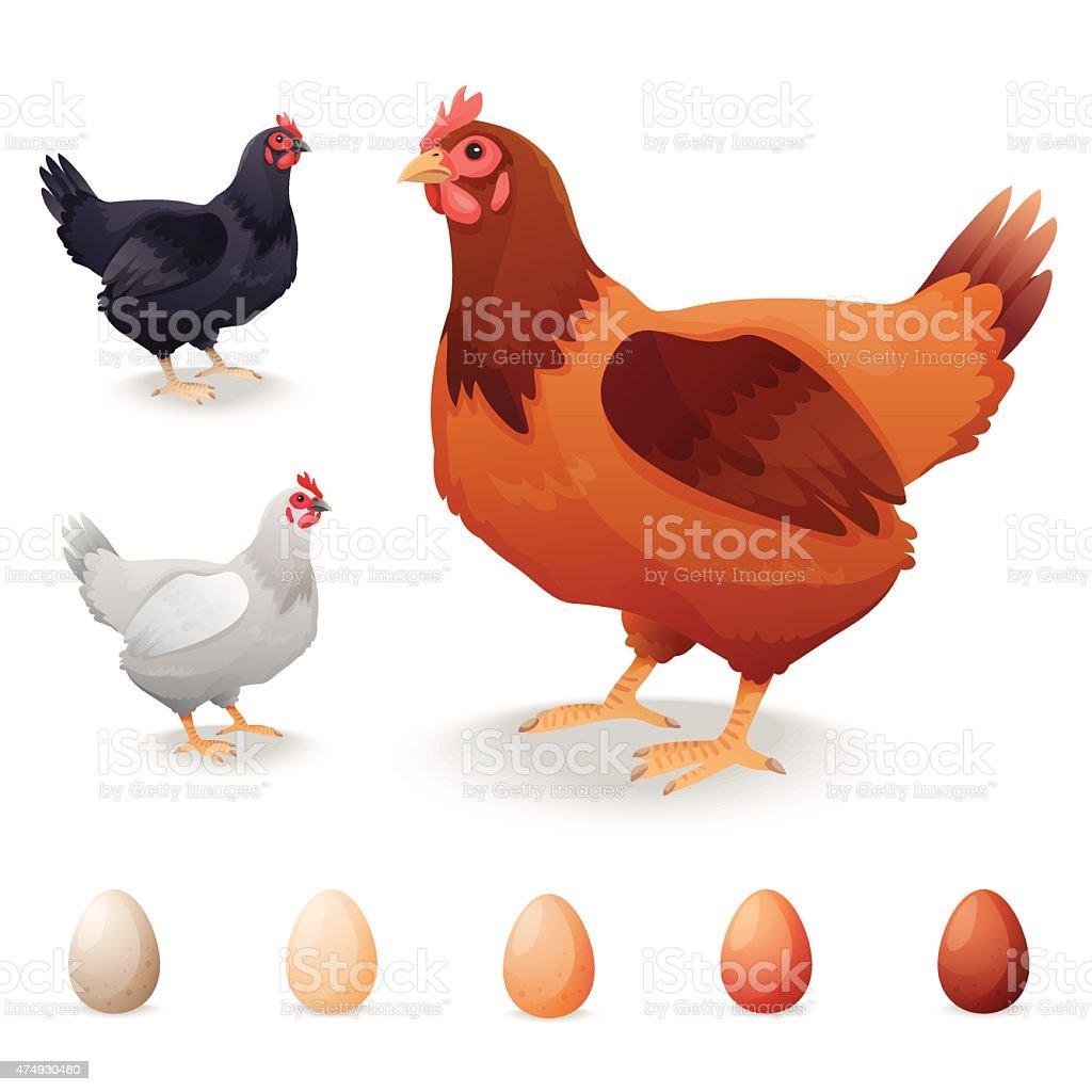 リアルな hens 様々な犬種や卵 のイラスト素材 474930480   istock