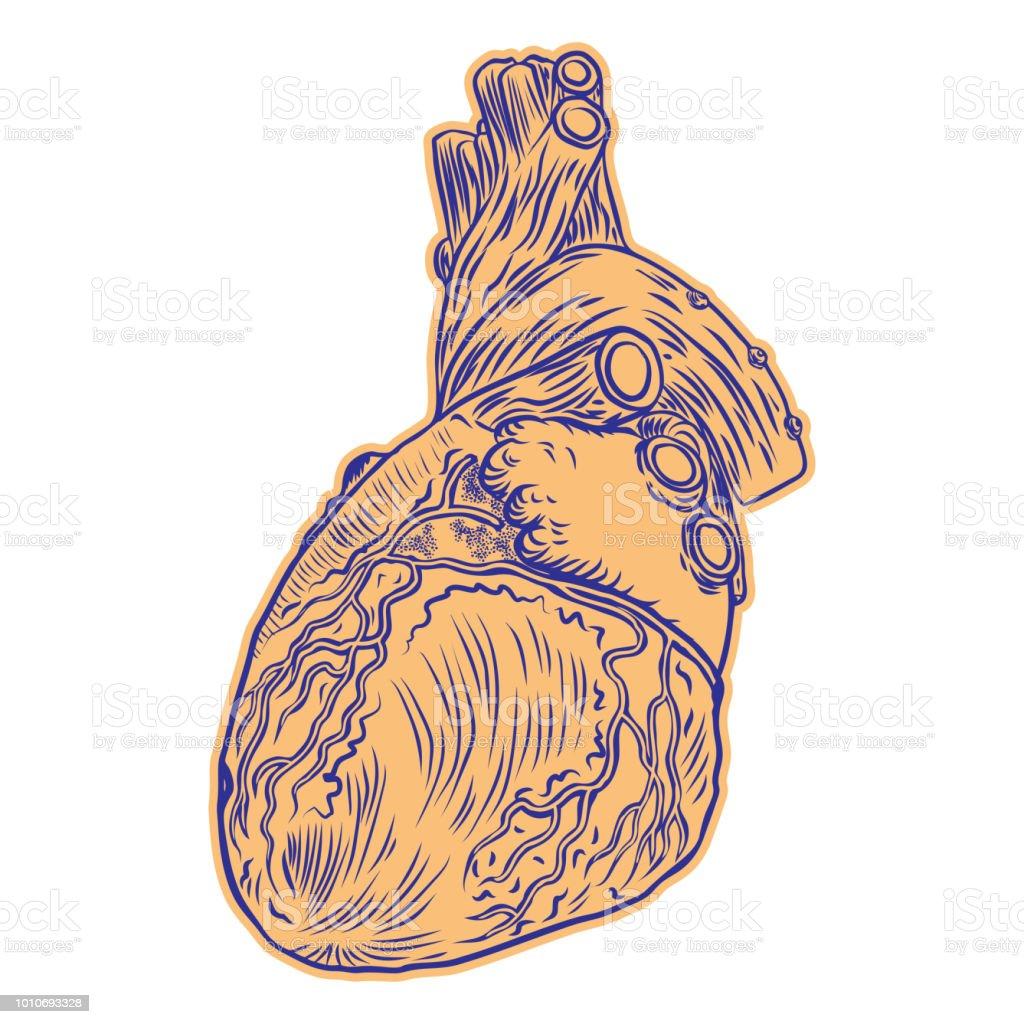 Ilustración De Corazón Humano Realista Dibujo Tatuaje De Arte Diseño