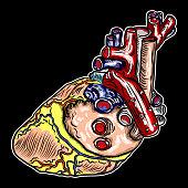 Ilustración De Corazón Humano Realista Dibujo A Mano Estilo Vintage