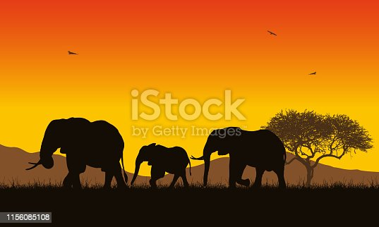 Realistic illustration of African landscape with safari, trees and family of elephants under orange sky with rising sun. Mountains with flying birds in background - vector