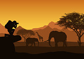 Realistic illustration of African safari with mountain landscape, trees and elephant and giraffe. Tourist with backpack takes photographing of animals. Under the orange sky with rising sun - vector