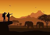 Realistic illustration of African safari with mountain landscape, trees and elephant. Two tourist with backpack and flying bird. Under the orange sky with rising sun - vector