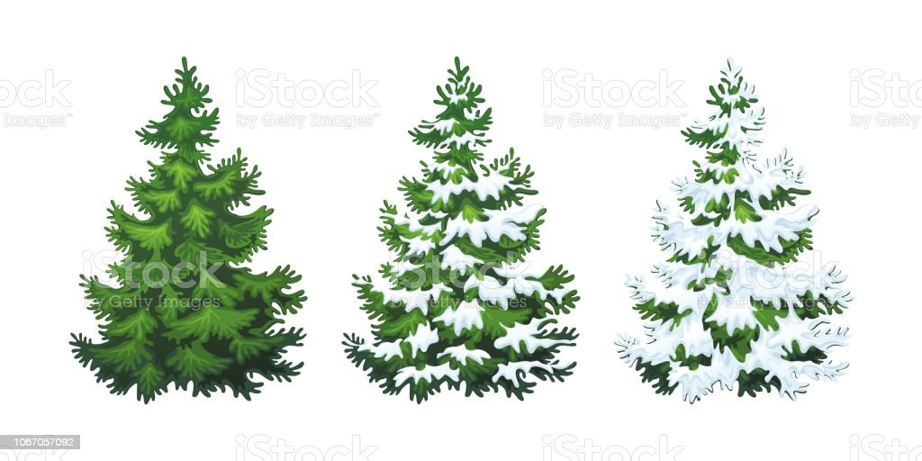 Realistic illustration of fluffy fir tree in snow 1.1