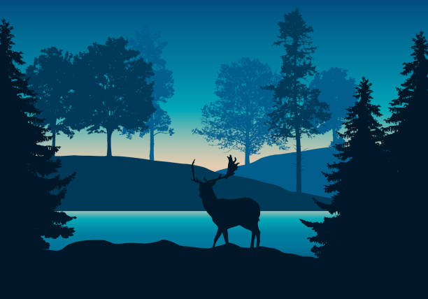 stockillustraties, clipart, cartoons en iconen met realistische illustratie van heuvelig landschap met bos, rivier of meer en bevindende herten onder blauw-groene hemel met dawn-vector - roofdieren