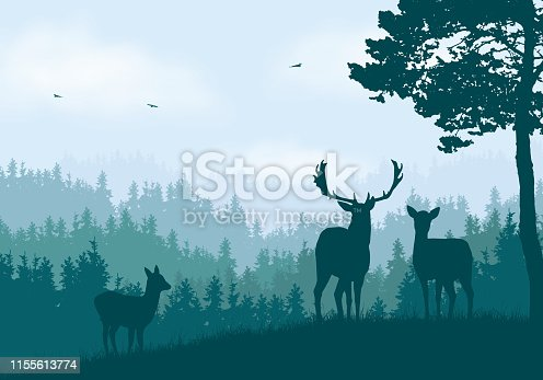 Realistic illustration of mountain landscape with coniferous forest under clear blue and green sky with white clouds. Deer, doe and little deer standing and looking into valley - vector
