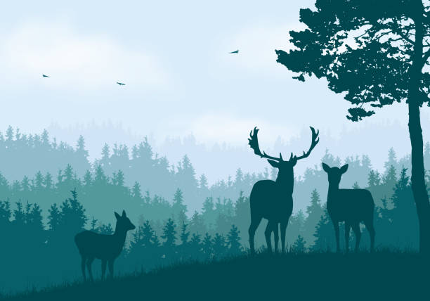 Realistic illustration of mountain landscape with coniferous forest under clear blue and green sky with white clouds. Deer, doe and little deer standing and looking into valley - vector Realistic illustration of mountain landscape with coniferous forest under clear blue and green sky with white clouds. Deer, doe and little deer standing and looking into valley - vector autumn silhouettes stock illustrations