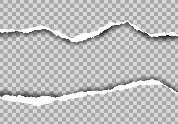 ilustrações, clipart, desenhos animados e ícones de ilustração realística do papel rasgado com espaço para o texto. isolado no fundo transparente-vetor - papel
