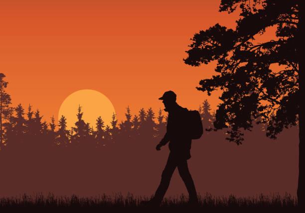 배낭, 잔디와 높은 나무와 도보 관광의 현실적인 그림. 떠오르는 태양과 오렌지 하늘 아래 숲입니다. 텍스트 공간 - 벡터 - mountain top stock illustrations