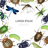 Vector file of Insects Icons