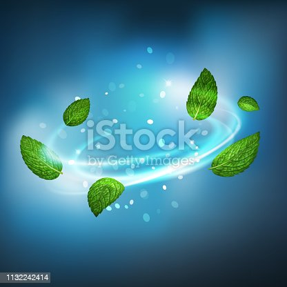 istock 3D realistic isolated vector vortex of mint leaves 1132242414