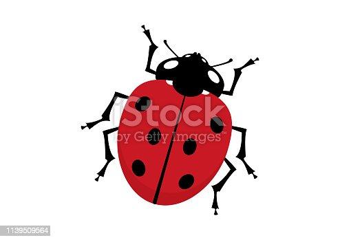 Ladybird isolated on a white background. Ladybug vector clip art