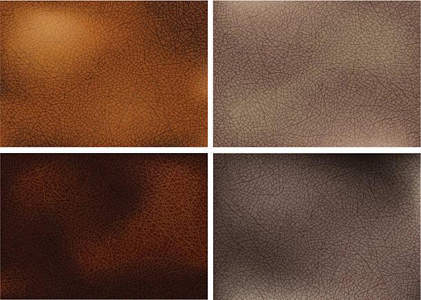 ilustraciones, imágenes clip art, dibujos animados e iconos de stock de realista texturas de cuero - textura de pieles