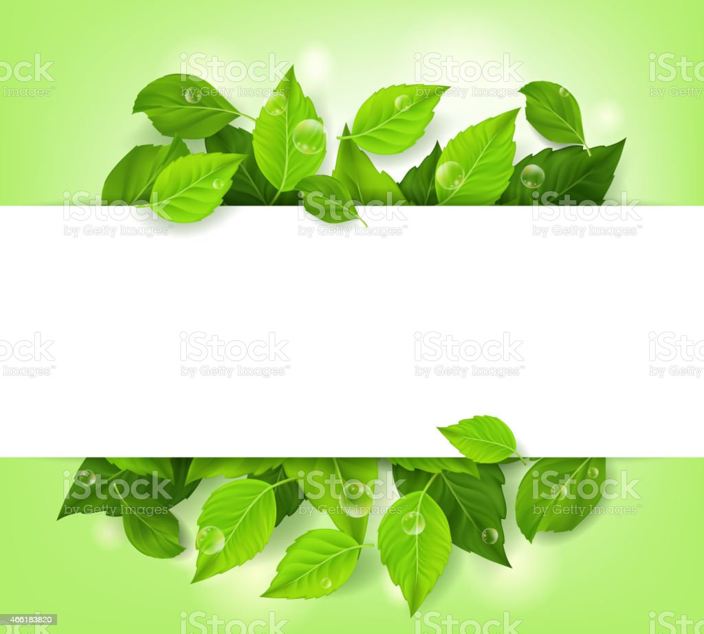 Realistic Leaves Background with White Space vector art illustration