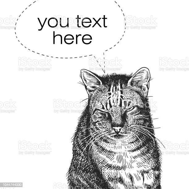 Realistic portrait of cat vintage engraving black and white hand of vector id1044744330?b=1&k=6&m=1044744330&s=612x612&h=qvpotobrawhxiko2kekdhtssknupmitqw02o x2elr8=