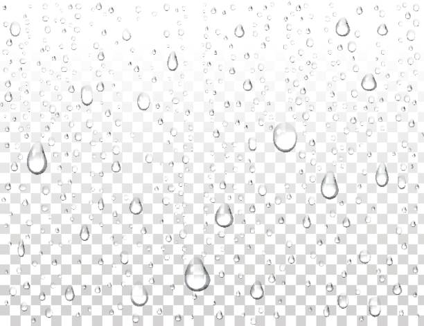 realistic pure water drops on isolated background. clean water drop condensation. steam shower condensation on vertical surface. vector illustration. - rain stock illustrations, clip art, cartoons, & icons