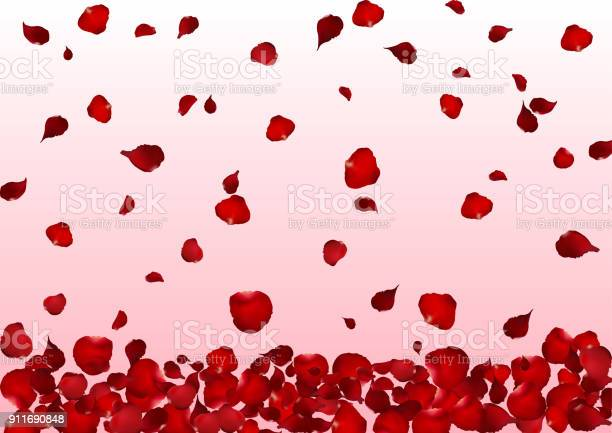 Realistic red rose petals scattered down on pink background flower vector id911690848?b=1&k=6&m=911690848&s=612x612&h=15e xh2tylg1svdm ileb2wyh9yuxnrx8jf3gfwav 0=