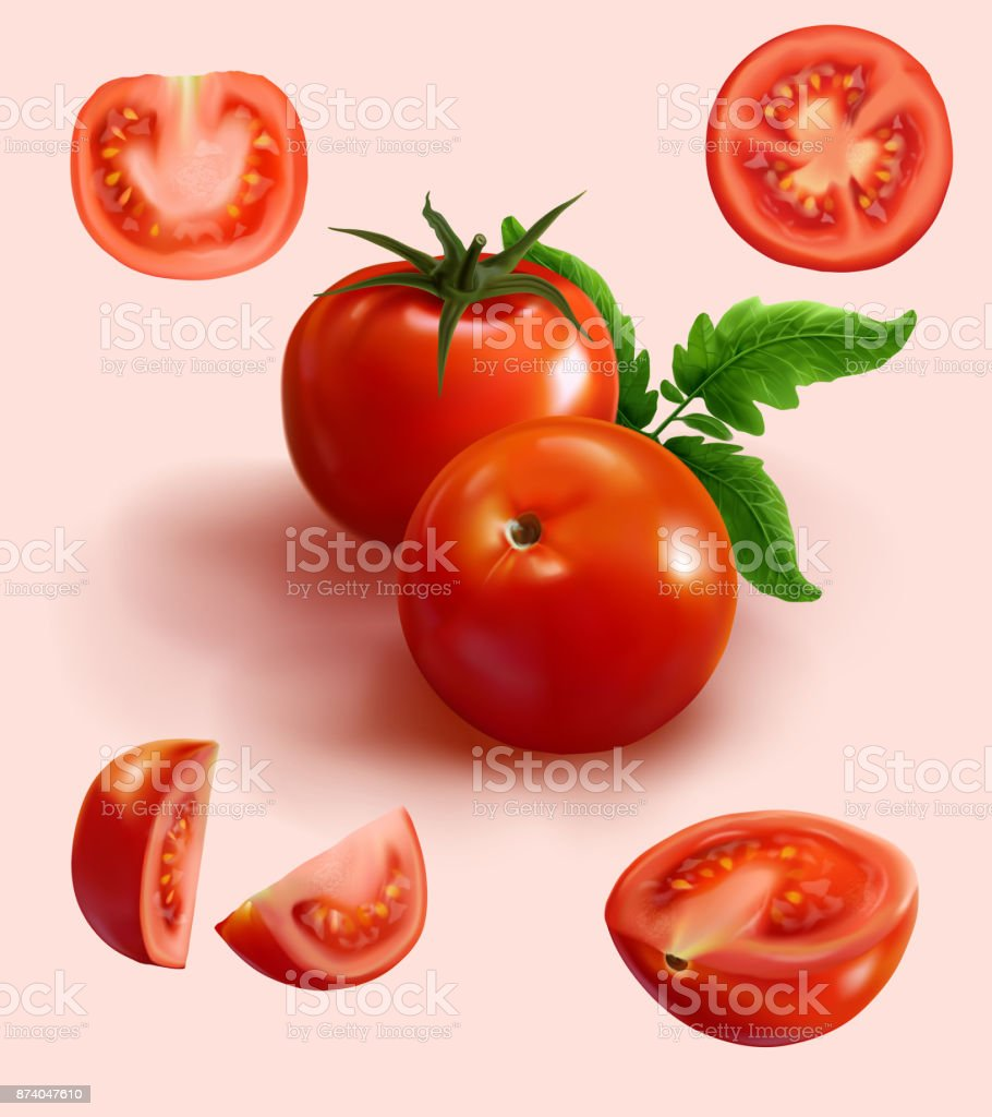 realistic red tomato in various cut,cut in half,piece,slices vector art illustration