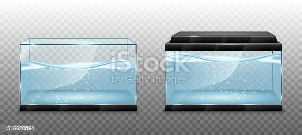 istock Realistic transparent aquarium with water inside. Vector illustration isolated on transparent background 1316620594