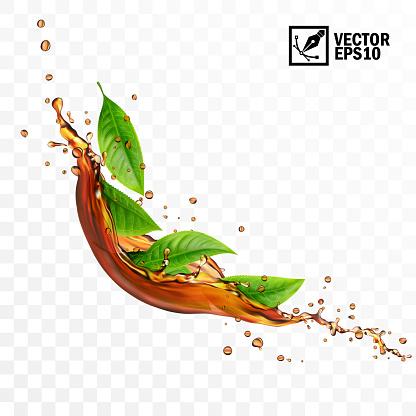 Realistic transparent isolated vector falling splash of tea with leaves, editable handmade mesh