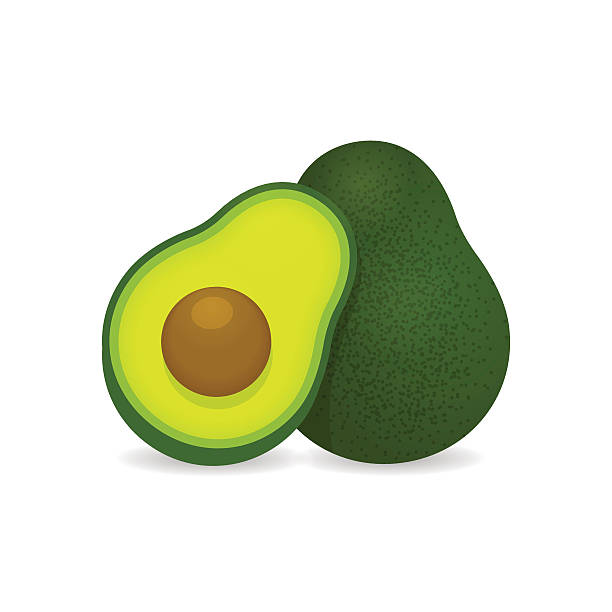 Realistic vector avocados illustration Realistic vector avocados illustration. Whole and cut avocado isolated on white background. avocado stock illustrations