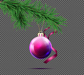 Vector realistic purple christmas ball with fir branch and decorative ribbon isolated on transparent background. Glossy, shiny, glass bauble hanging on the spruce twig, decoration for new year tree