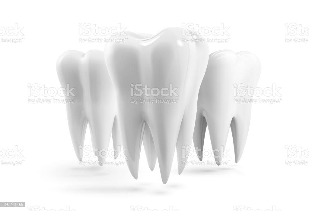 Realistische Vektor Menschlichen Zahn Icon Designvorlage ...