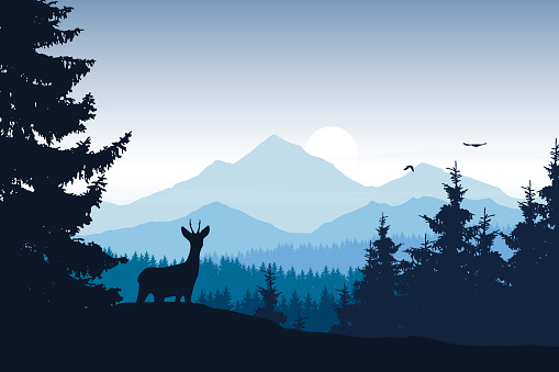Realistic vector illustration of mountain landscape with forest, deer and eagle clipart