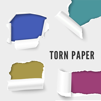 Realistic vector illustration of white paper