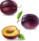 Realistic vector plum collection. Plums 3d icons isolated.