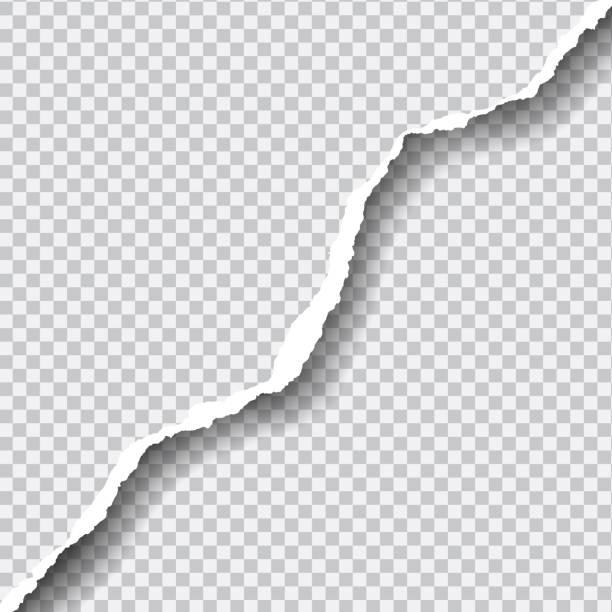realistische vektor riss papier mit platz für ihren text. - zerrissen stock-grafiken, -clipart, -cartoons und -symbole