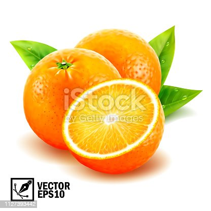 Realistic vector set fresh whole oranges and sliced orange with leaves and dew drops. Editable handmade mesh