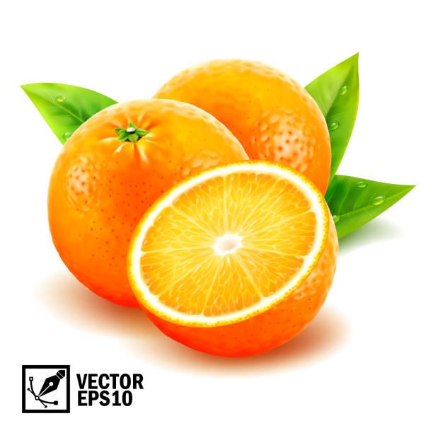 ilustrações de stock, clip art, desenhos animados e ícones de realistic vector set fresh whole oranges and sliced orange with leaves and dew drops. editable handmade mesh - orange
