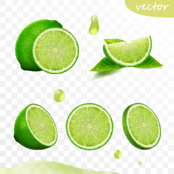 3D realistic vector set of elements, whole lime, sliced lime, drop lime oil, leaves 3D realistic vector set of elements, whole lime, sliced lime, drop lime oil, leaves lime stock illustrations